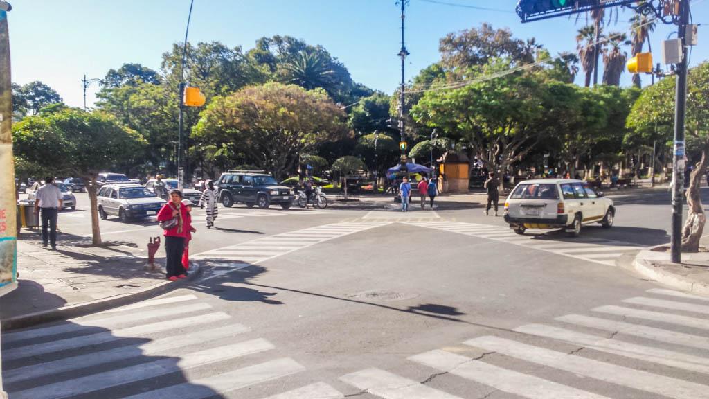 zebra at a crossing